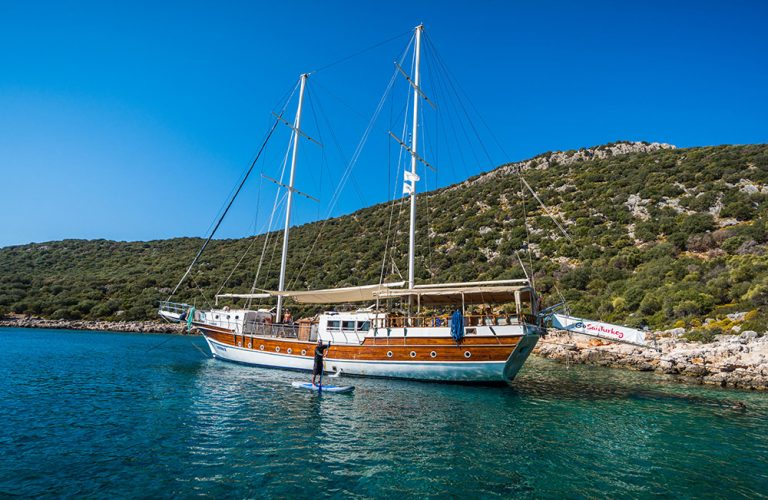 Eighty-one in a secluded bay